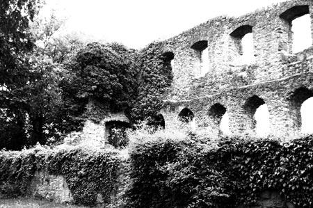 Innenaufnahme Burgruine Karlsburg